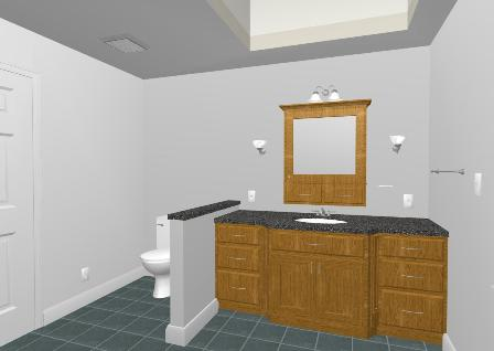 Vanity and Toilet Area